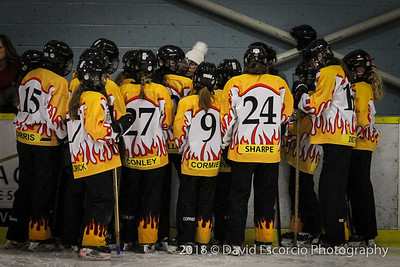 Waterloo Wildfire RIngette