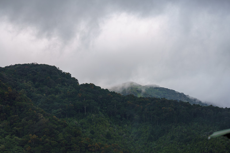 Costa Rica 2015-4982.jpg