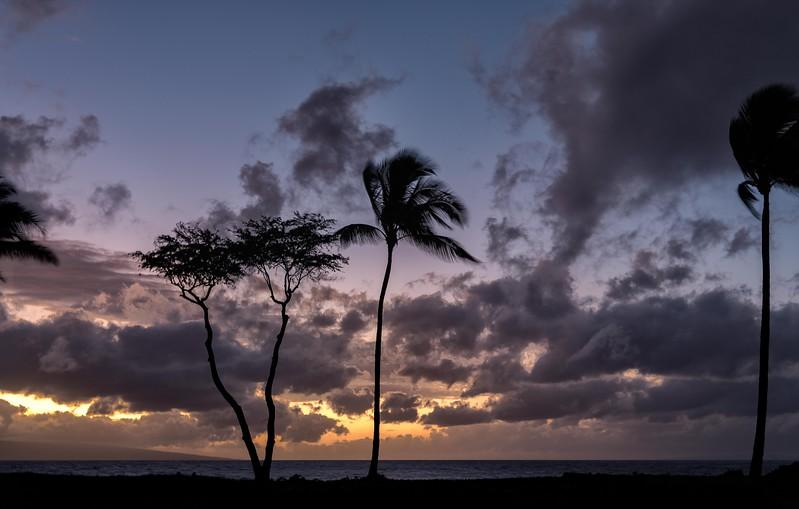 2015-02Feb01-Hawaii-91-Edit-Edit-Edit-Edit.jpg
