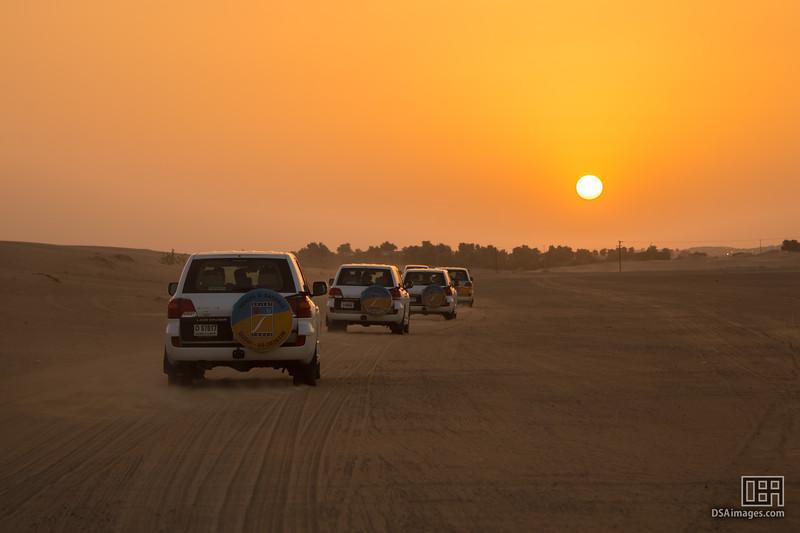 Dune Safari