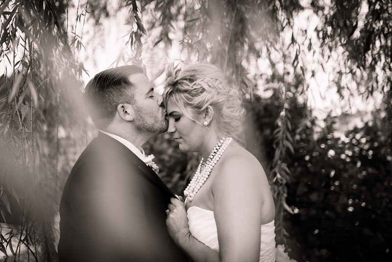 Flannery Wedding 3 Photo Session - 27 - _ADP9461.jpg