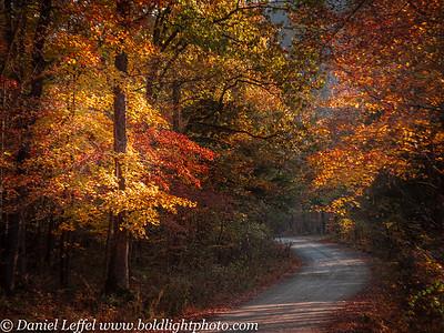 Arkansas Fall Colors