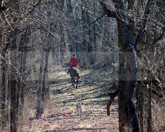 Blue Ridge at Locust Hill 1-17-15