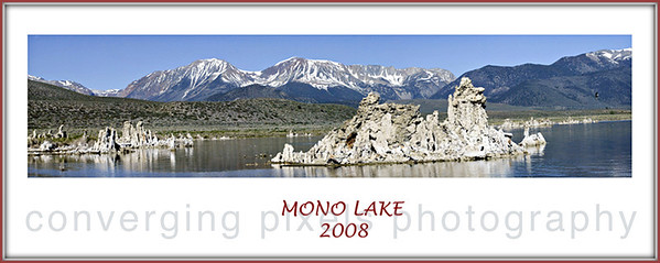 """In 1978 the Mono Lake Committee was formed to """"Save Mono Lake"""" from the ecosystem that was collapsing due to the diversion of water to LA. Now Mono Lake is healthy and the site of many bird species and plant life.  '""""MONO LAKE 8x20"""""""