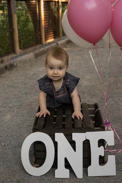 Sonya's First Birthday