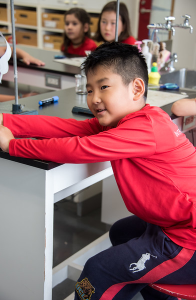 Gr. 2 Science Experiment-untitled shoot-YIS_7014-2018-19.jpg