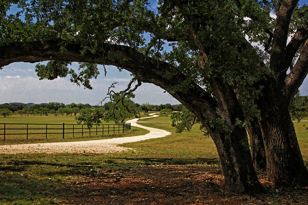 Texas Hill Country3