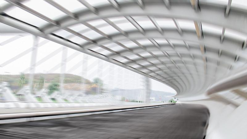 sestao puente (9)-Editar.jpg