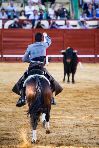 Bullfighting H12.jpg