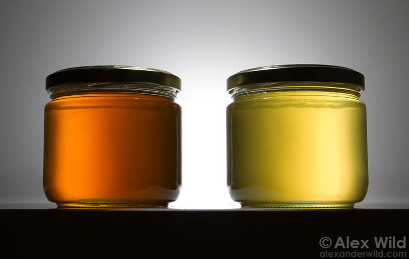 Nectar source makes a tremendous difference in honey color and taste. Here, a late summer wildflower blend (left) is contrasted with linden honey (right) harvested earlier in the season from the same hive.