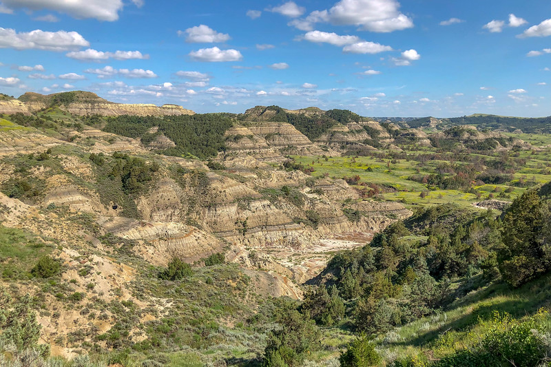 Theodore Roosevelt National Park - South Unit (7-10-19)
