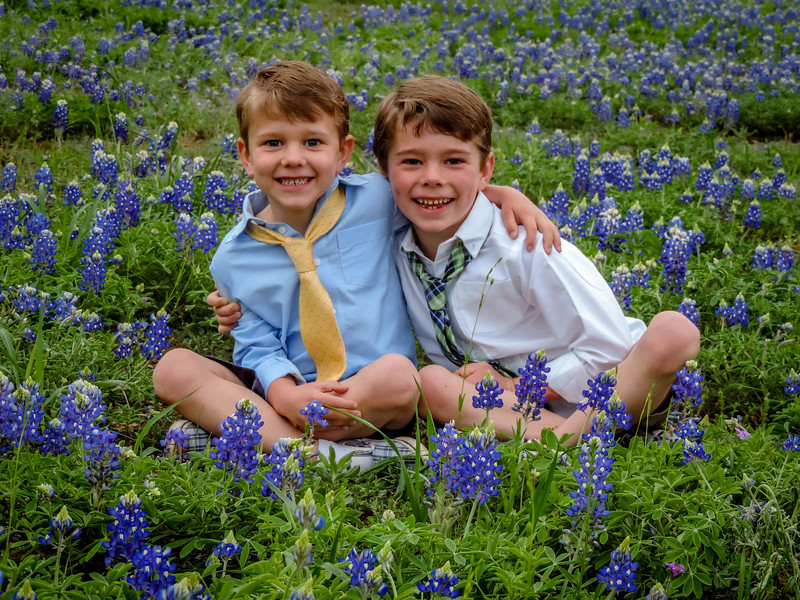 Billodeau Boys and Bluebonnets