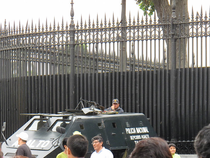Guarding the Palace