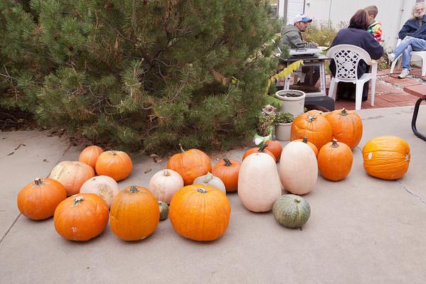 Pumpkin Carvin 2013