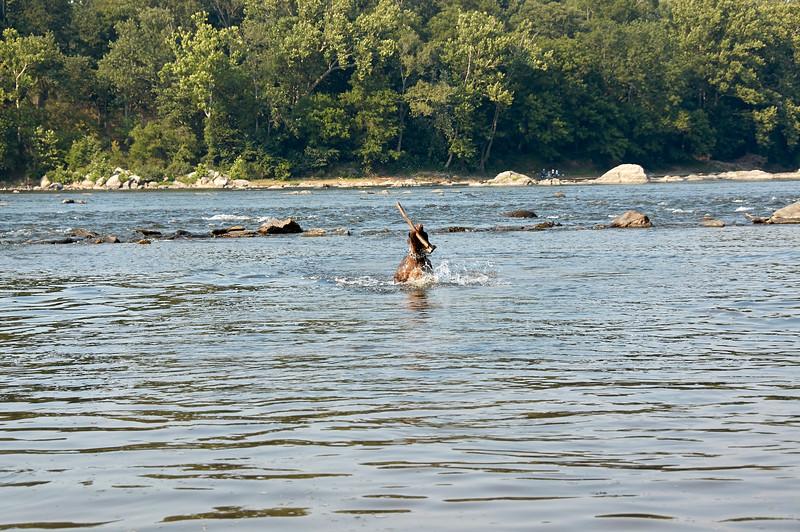 Morgen at Great Falls Park 20 - 2007.07.07 - DSC_0413.jpg