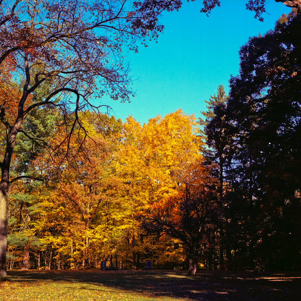 Autumn Hike 120 Film-00021.jpg