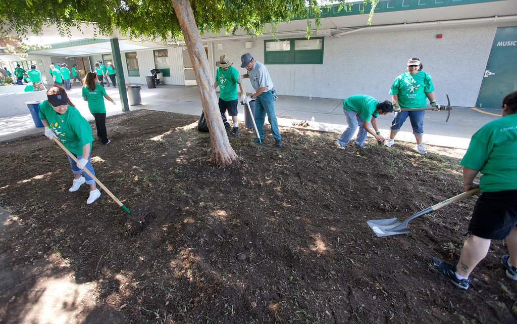 . Volunteers do weeding as local Comcast employees and their families joined with students and parents to spend the morning planting, installing benches, painting, landscaping and cleaning up the grounds at Adelante Dual Language Academy in San Jose Saturday, April 27, 2013. The volunteer effort is part of the 12th �Comcast Cares Day,� the largest single-day corporate volunteer effort in the United States that brought together more than 70,000 Comcast employees, their families and friends nationwide to help make a difference in their communities.  3,000 Comcast employees and their families did volunteer work at 16 schools affected by budget cuts in California. (Patrick Tehan/Bay Area News Group)