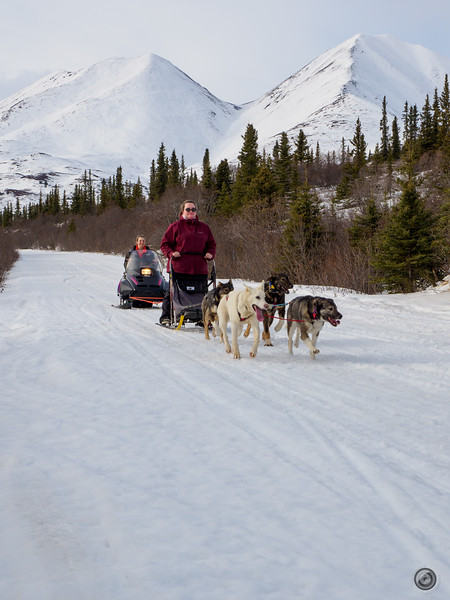 20190325_Blaire_and_Liz_Mushing_85.jpg