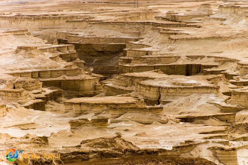 Masada-8946.jpg