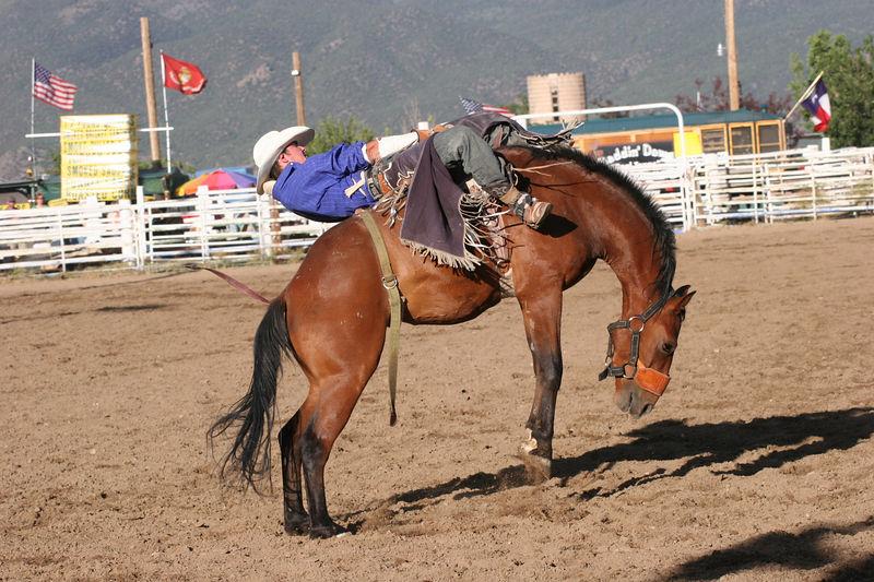 Rodeo - 15.jpg