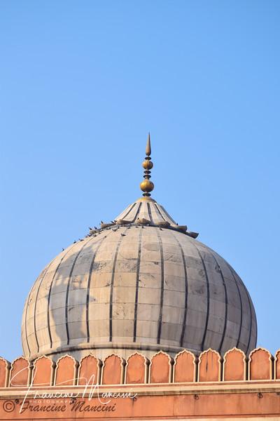 India  (101 of 5540).jpg