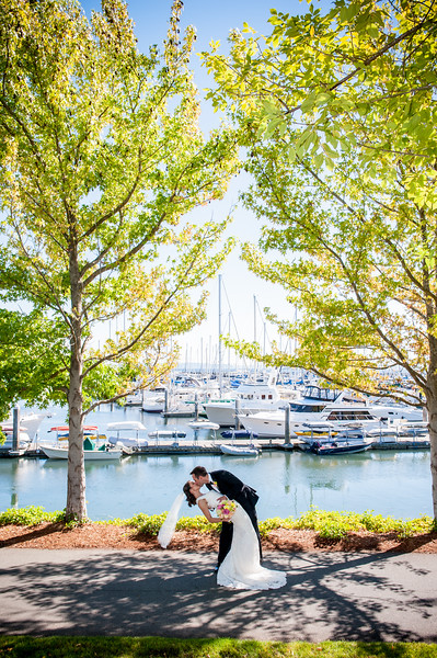 Palisades-magnolia-summer-outdoor-wedding-carol-harrold-photography-50.jpg