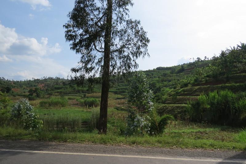 Tanzania 2016 138.JPG