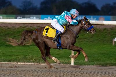 Ponnygalopp Jägersro 201108