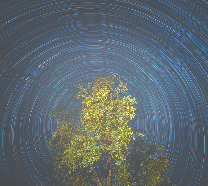 backyard star trails.jpg