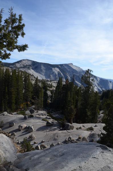 Sierra4.jpg