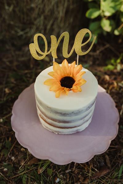 Emersyn Cake Smash