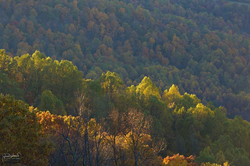 2012-10-21 at 15-01-08.jpg