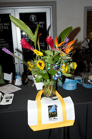 FreeFlight Tropical Sunset Fundraiser