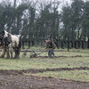 Horse ploughing, Benny Moen on the reins and Mickey Carragher on the plough, 06W11N80