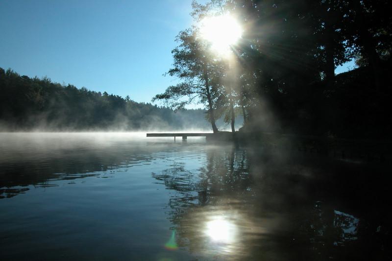 unser Steg im Nebel und Gegenlicht von Jonas