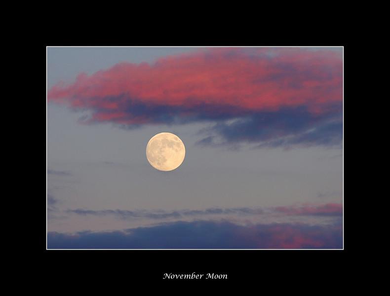 november-moon.jpg