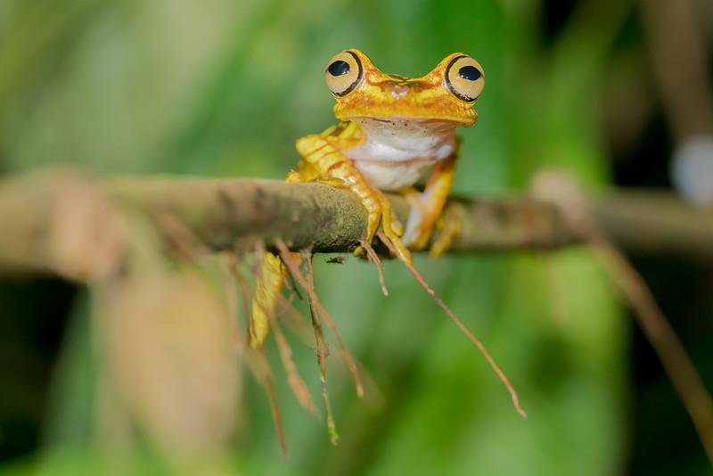 Biodiversity Group, _DSC4398