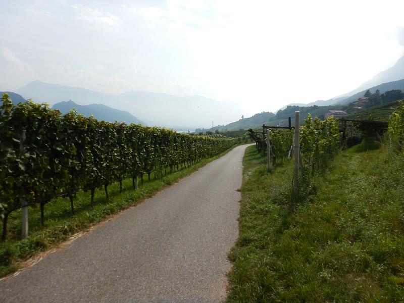 Kalter-Italy-to-Lake-Caldero-Bike-Path.JPG