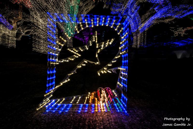 Houston-Zoo-Lights-2915.jpg