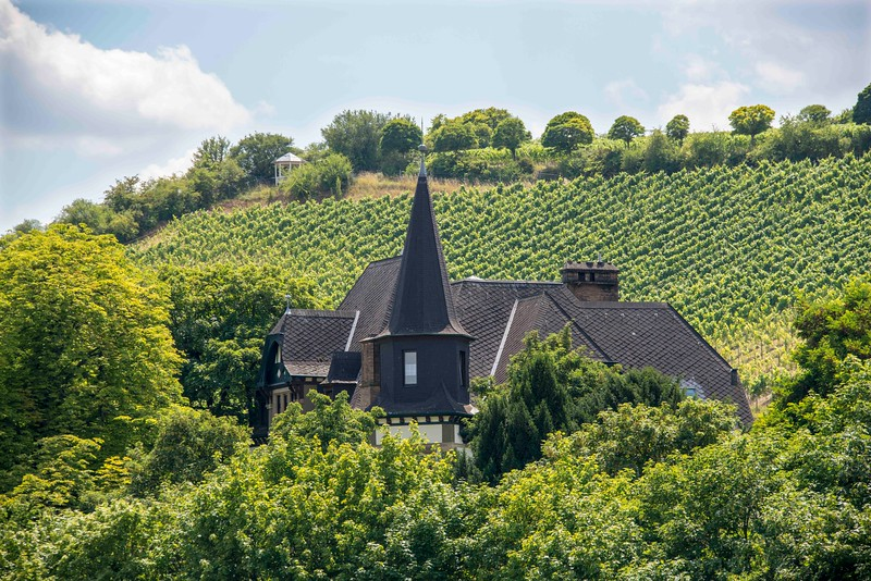 Rhine Countryside-2.jpg