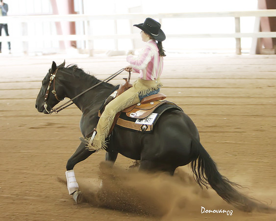 NRHA Novice Horse