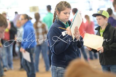 Livestock Judging & BCF Exhibitor Awards