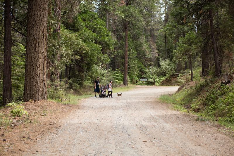 Yosemite_2016-21.jpg