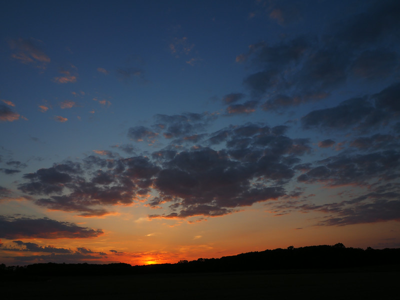 farmland sunset.jpg