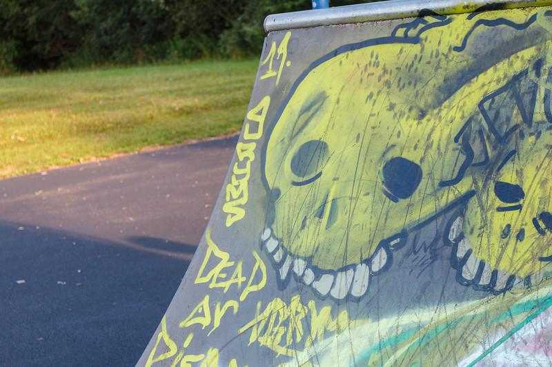 Skateboard-Aug-93.jpg