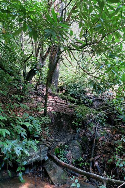 High Falls Spur - 2,720'