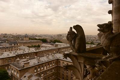 Notre Dame cathedral gargoyles