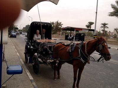 28 Evening in Luxor