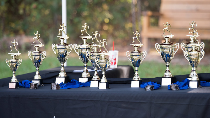 Area Championship