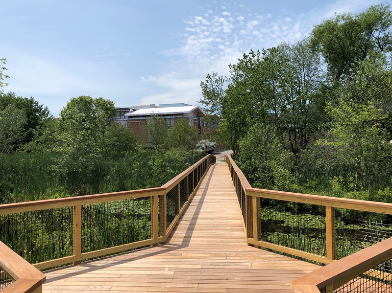 View from the New Boardwalk